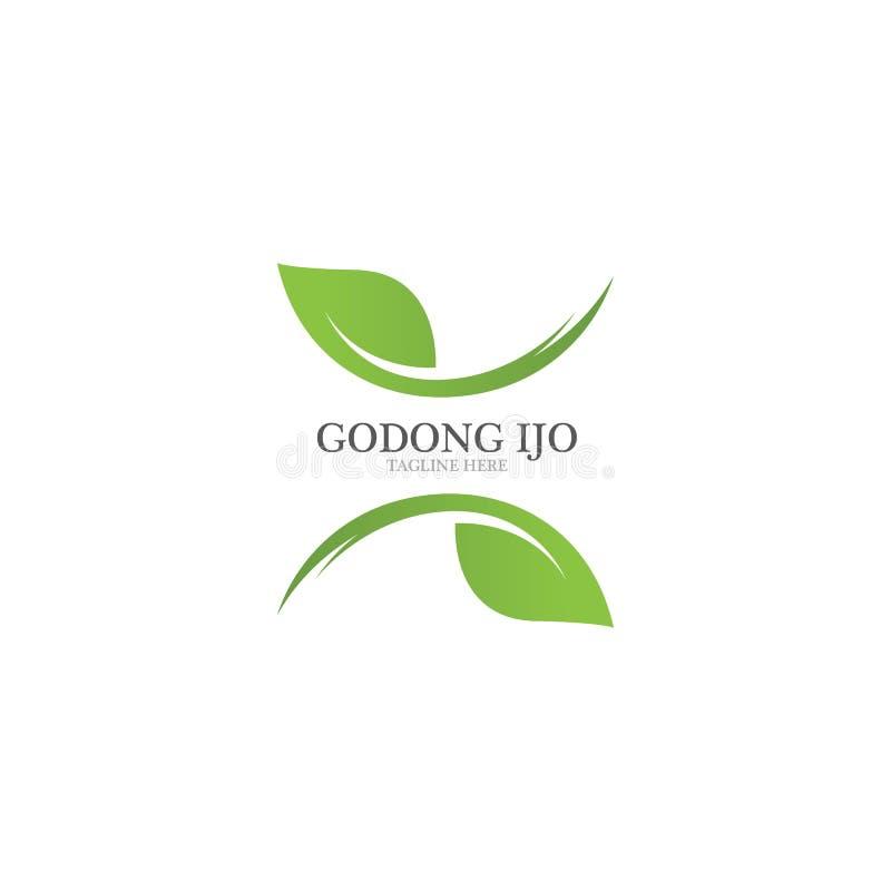 绿色叶子生态商标  库存例证
