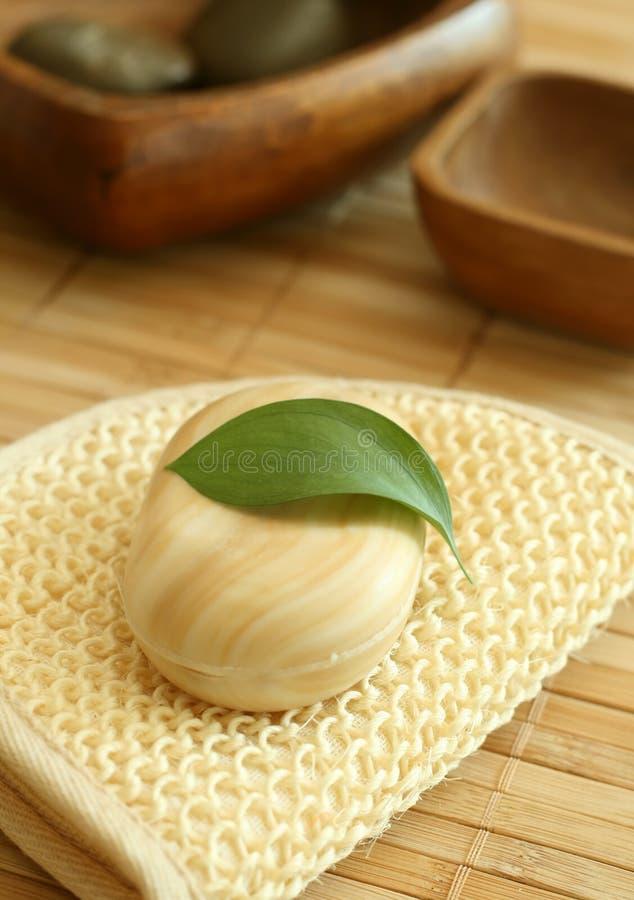 绿色叶子肥皂 图库摄影