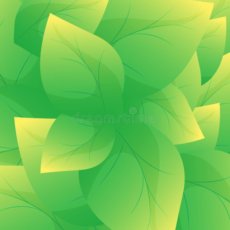 绿色叶子背景传染媒介 美好的叶子纹理背景 库存例证