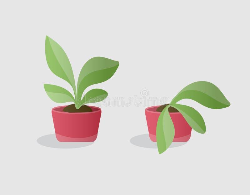 绿色和枯萎的植物 向量例证
