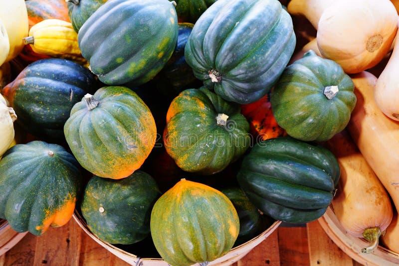绿色和橙色橡子南瓜篮子在秋天的 免版税库存照片