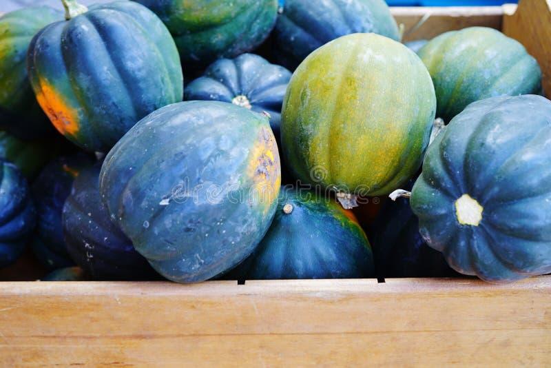 绿色和橙色橡子南瓜篮子在秋天的 免版税库存图片
