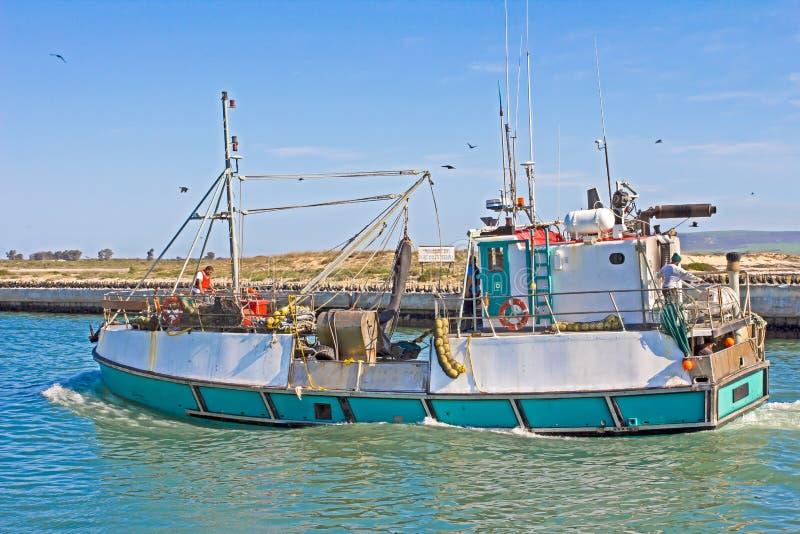 绿色和白色鱼小船装载与鱼,南非 库存照片