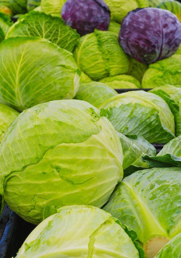 绿色和紫色圆白菜朝向在农夫市场上 免版税库存照片