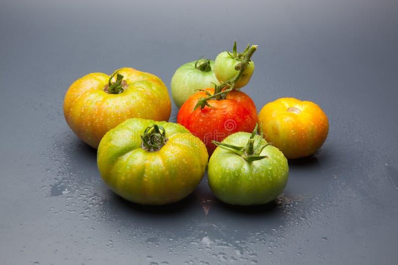 绿色和红色蕃茄,成熟的过程 免版税库存照片
