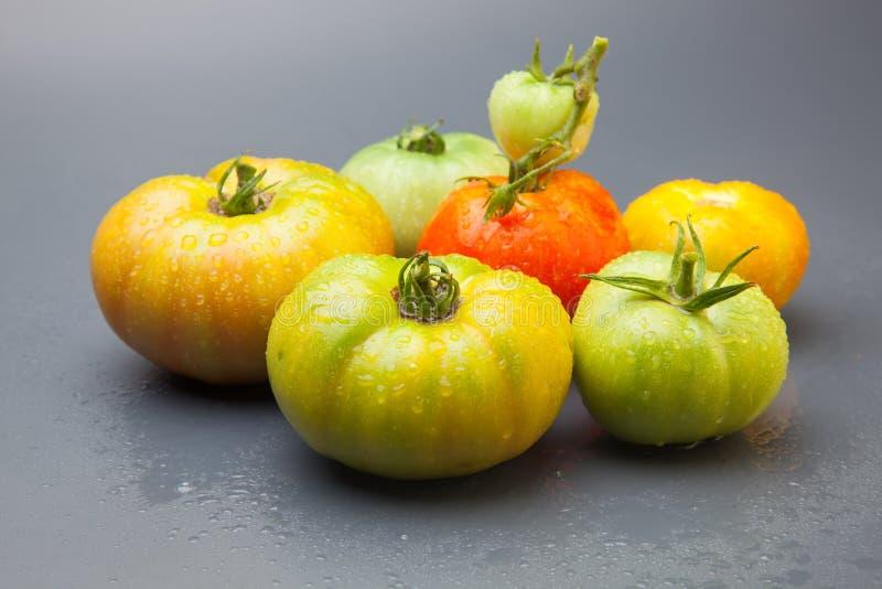 绿色和红色蕃茄,成熟的过程 图库摄影