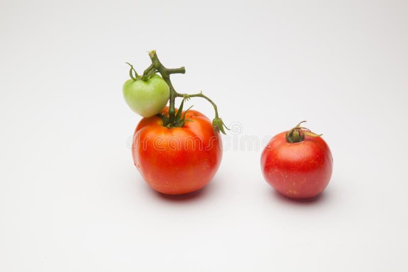 绿色和红色蕃茄,成熟的过程 库存图片