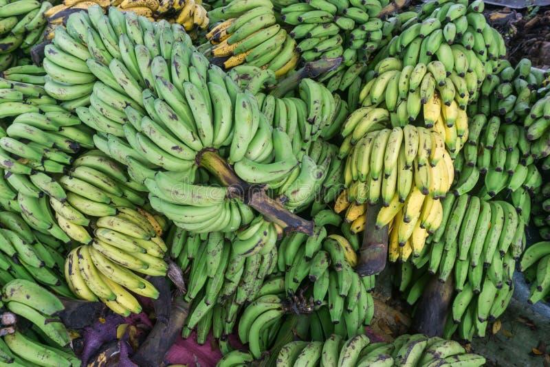 绿色和黄色香蕉束 免版税库存图片
