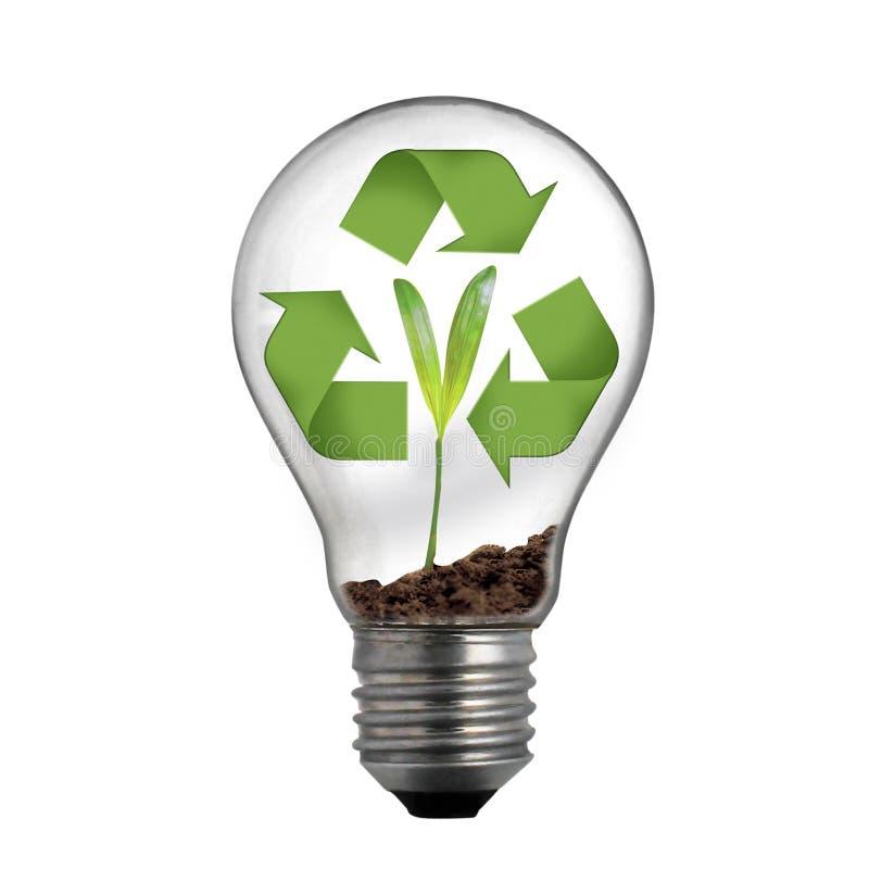 绿色回收 库存例证