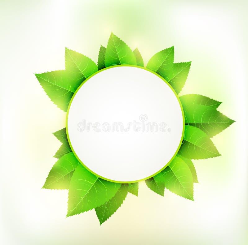 绿色圈子 库存例证