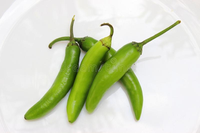 绿色在一块白色板材的jalapeño辣胡椒 库存图片