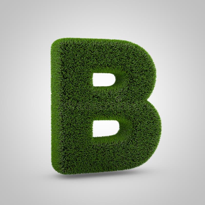 绿色在白色背景B隔绝的青苔大写字目 库存图片