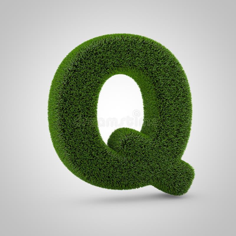 绿色在白色背景Q隔绝的青苔大写字目 库存照片