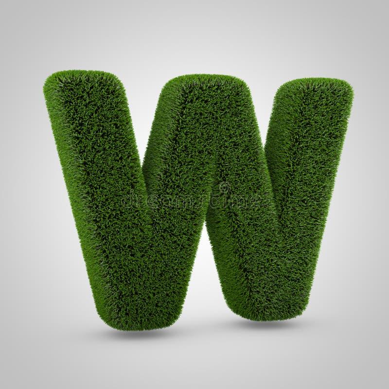绿色在白色背景W隔绝的青苔大写字目 免版税库存图片