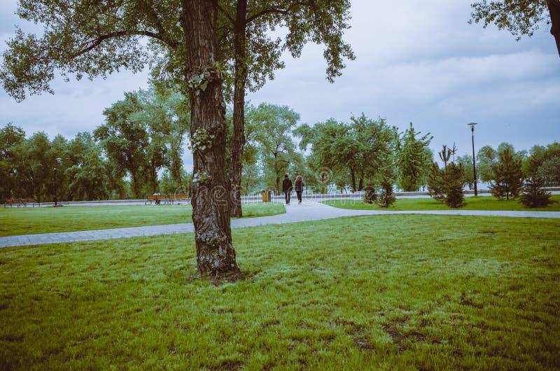 绿色城市公园全景  一对年轻夫妇在背景中走 免版税图库摄影