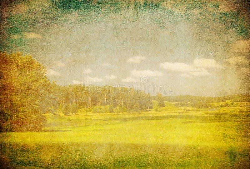 绿色域和蓝天的Grunge图象 库存例证