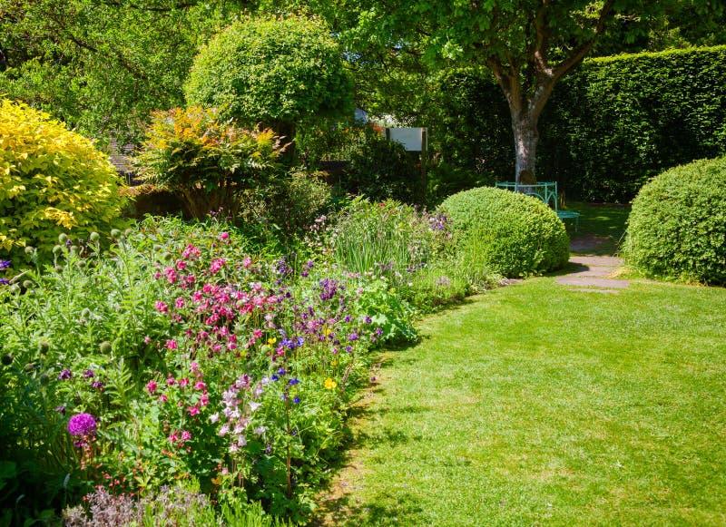 关心, 国家(地区), 培养, 设计, 英国, 英语, 范围, 花卉, 花, 花圃图片