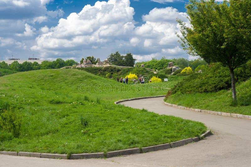 绿色夏天风景在基辅植物园里 免版税图库摄影