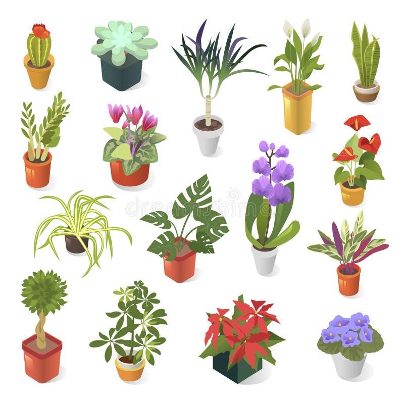 绿色家庭装饰等量象集合的家庭植物 库存例证