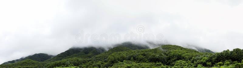 绿色山和雨云自然本底的 库存图片