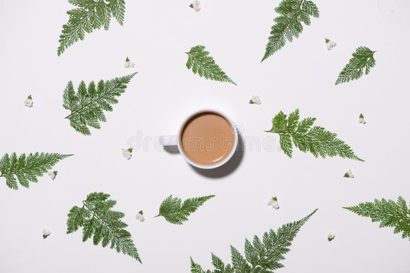 绿色平的位置留给样式咖啡在白色ba 免版税库存照片