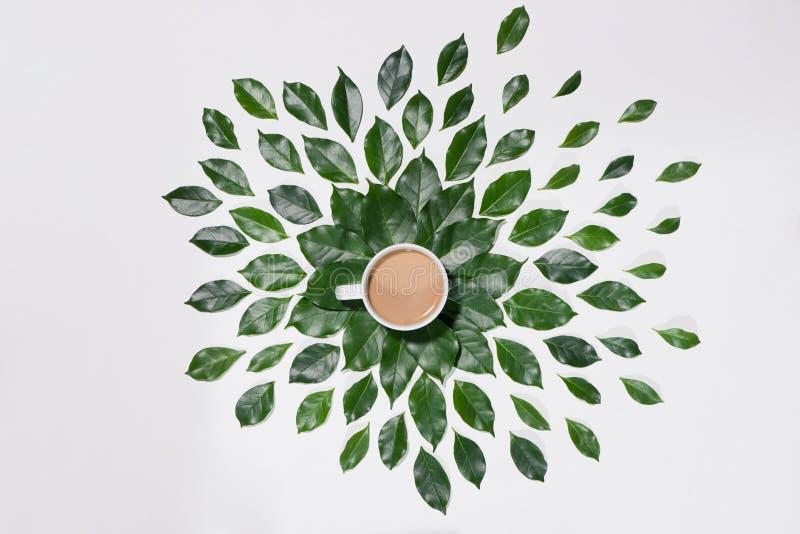 绿色平的位置留给样式咖啡在白色ba 库存照片