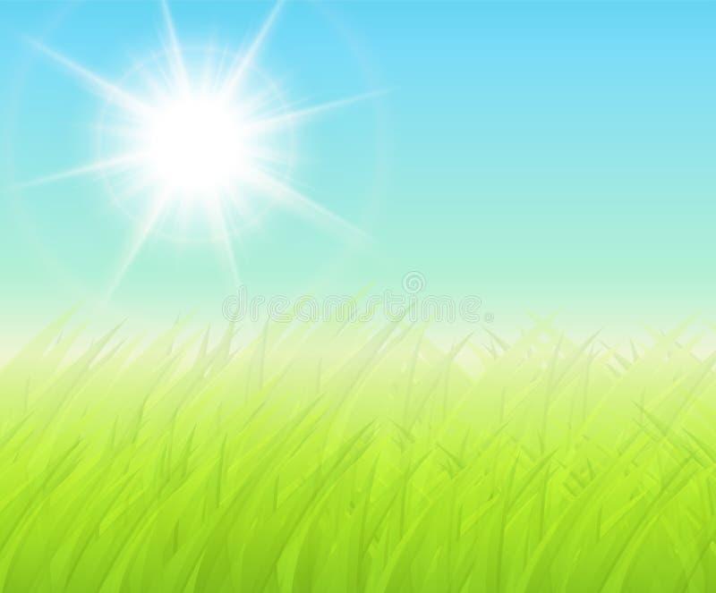 绿色晴朗的背景 皇族释放例证
