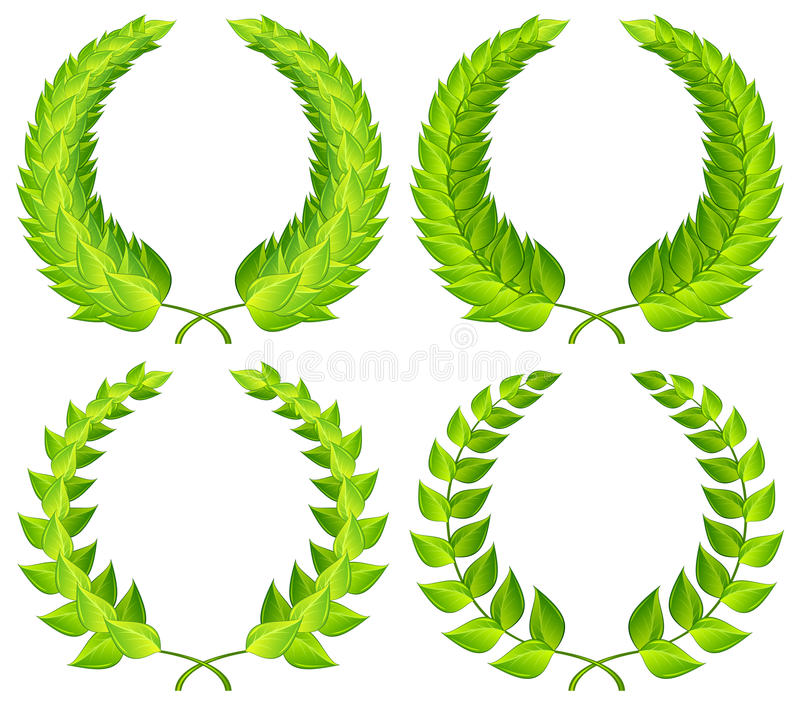绿色月桂树花圈 向量例证