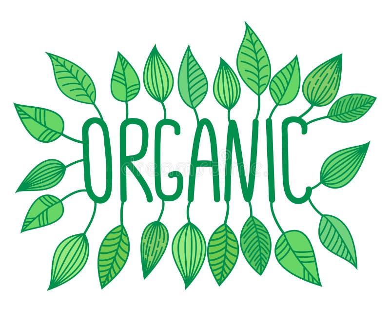 绿色有机签到与增长的叶子、传染媒介标签和标记,新鲜食品概念贴纸 皇族释放例证