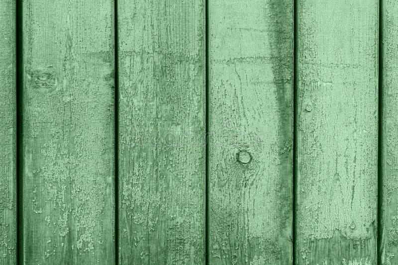 绿色木板纹理背景 2020年时尚色彩 木板旧式抽象背景 背景和 免版税库存图片