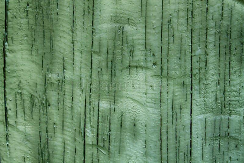 绿色木盘区背景,破裂的纹理,老表面 免版税库存图片