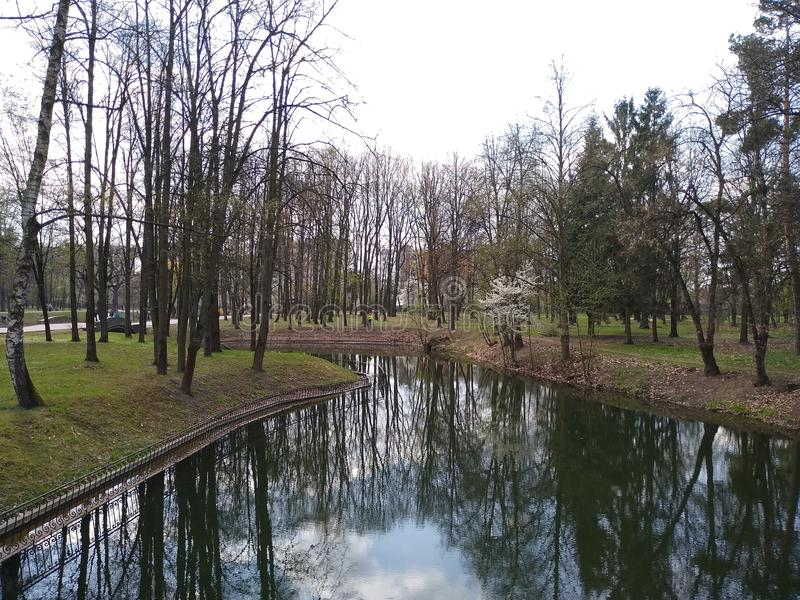 绿色树和天空蔚蓝在城市公园 E r 免版税库存照片