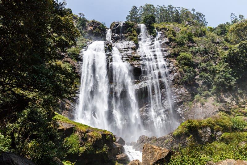 绿色树和瀑布,斯里兰卡美好的风景看法, 免版税库存照片