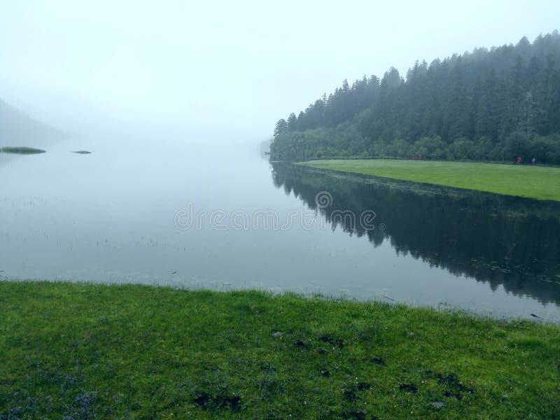 绿色树和草在山坡无危险是湖的被反射的水 库存图片