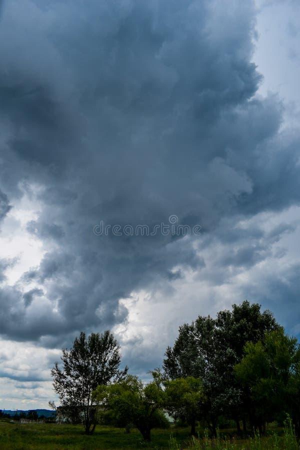 绿色树的充分领域和天空黑,威胁的云彩 强的风暴开始 免版税库存照片