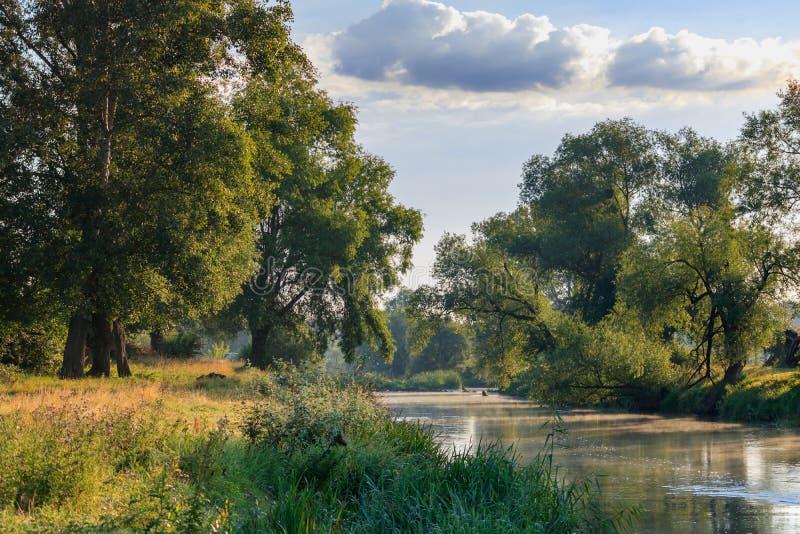 绿色树背景的小河在岸和蓝天的与云彩晴朗的夏日 河横向 库存照片