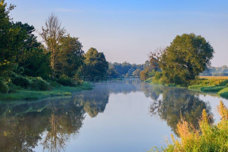 绿色树背景的小河在岸的反对蓝天 河风景在晴朗的夏天早晨 库存照片
