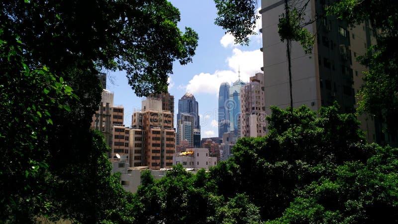 绿色框架在城市 图库摄影