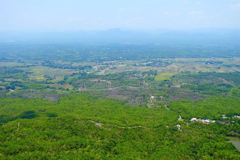 绿色森林顶视图泰国背景酷寒北风的  库存图片