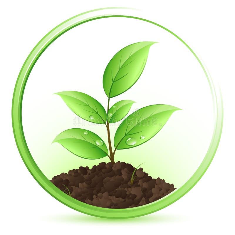 绿色植物 皇族释放例证