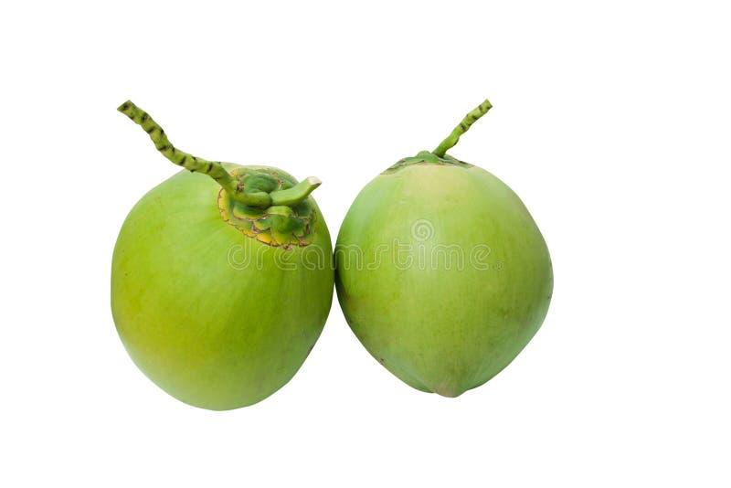 绿色椰子在与clippi的白色结果实查出 图库摄影