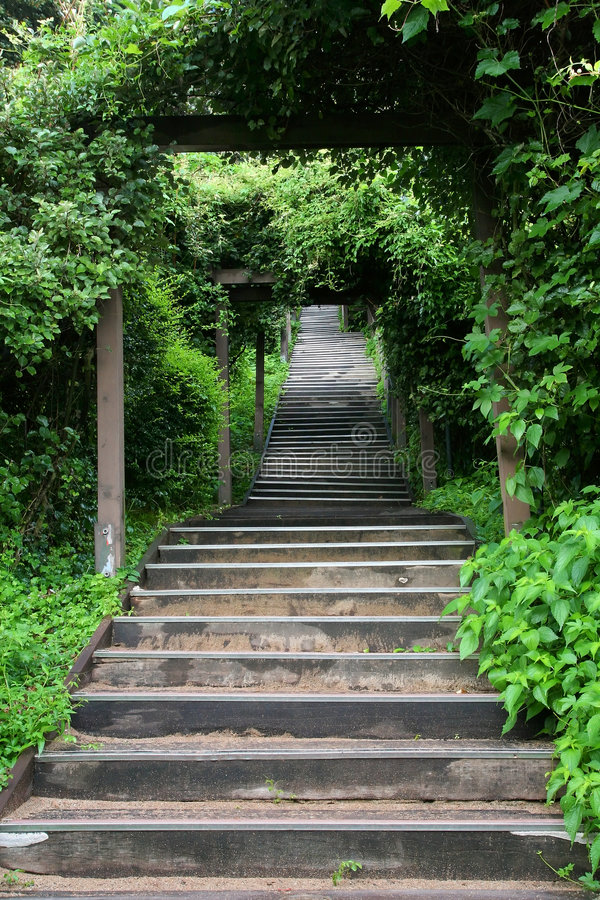 绿色楼梯 免版税库存照片