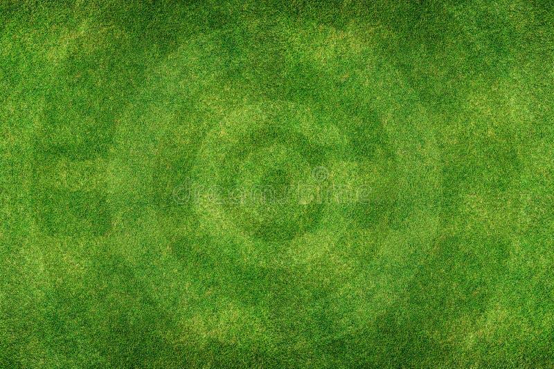 绿色橄榄球场领域 免版税图库摄影