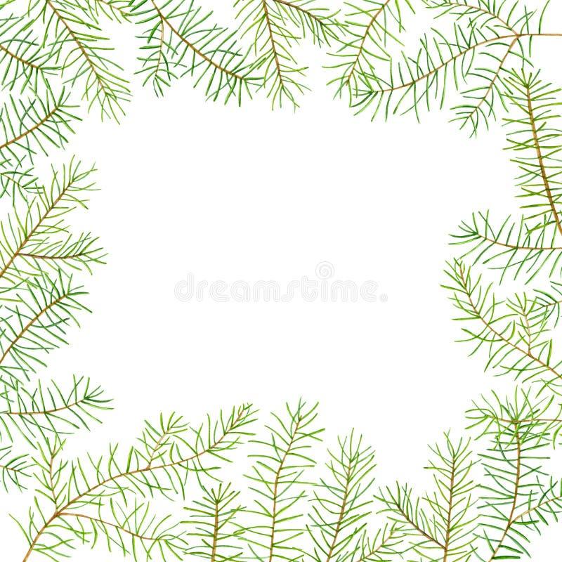 绿色水彩框架杉木分支 新年或圣诞节庆祝的模板卡片 名片模板 皇族释放例证