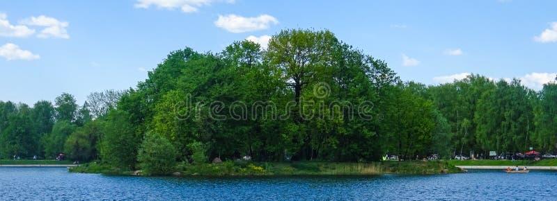 绿色海岛在Kuskovo公园 库存图片