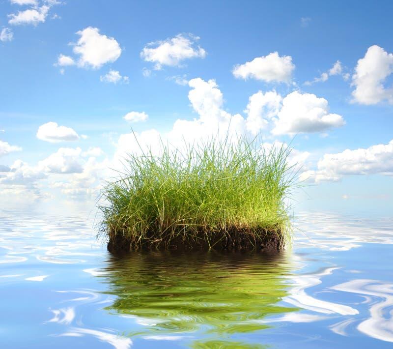 绿色海岛水 库存照片