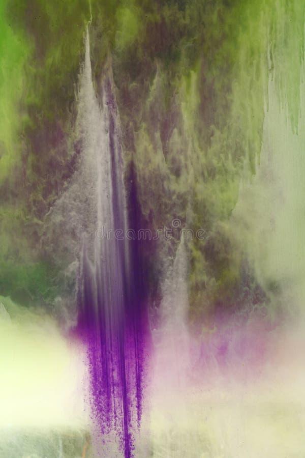 绿色混合紫罗兰 图库摄影