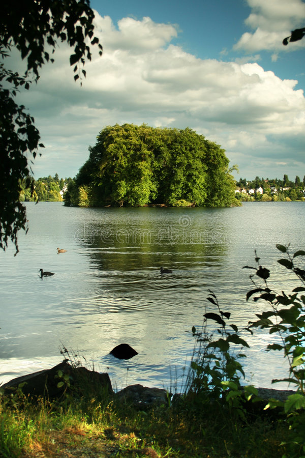 绿色湖西雅图 免版税库存照片