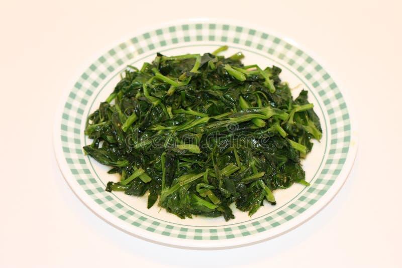 绿色牌照嫩煎的菠菜 免版税图库摄影