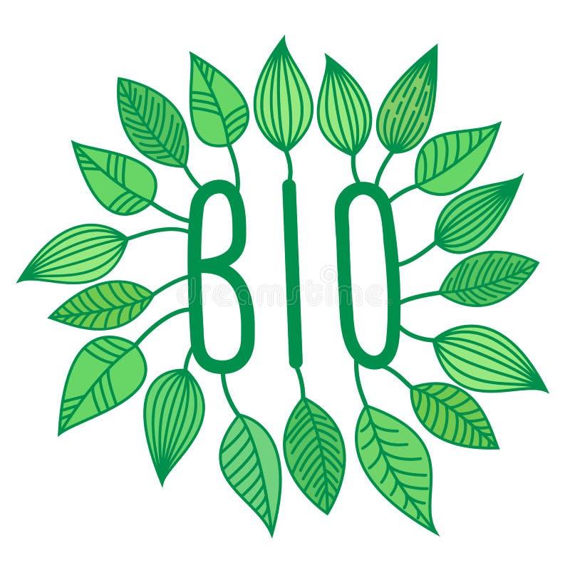 绿色生物签到与增长的叶子,传染媒介标签和标记,生态概念贴纸,新信件图片